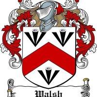 Walsh Irishtaxitours