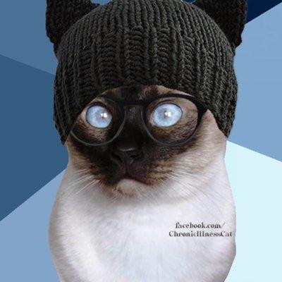 Rpt2rlcl_400x400 chronic illness cat (@chronillcat) twitter,Chronic Illness Cat Meme