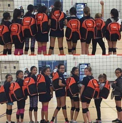 BVA Volleyball Club