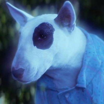 Spooky Ghost Dog 🐶 (@Crooooow) | Twitter