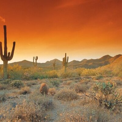 Tempe Arizona At Tempearizona Twitter