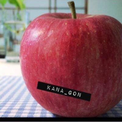 かなごん @kana_gon