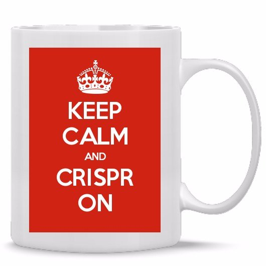 CRISPR blog