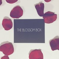 The Blossom Box Inc.
