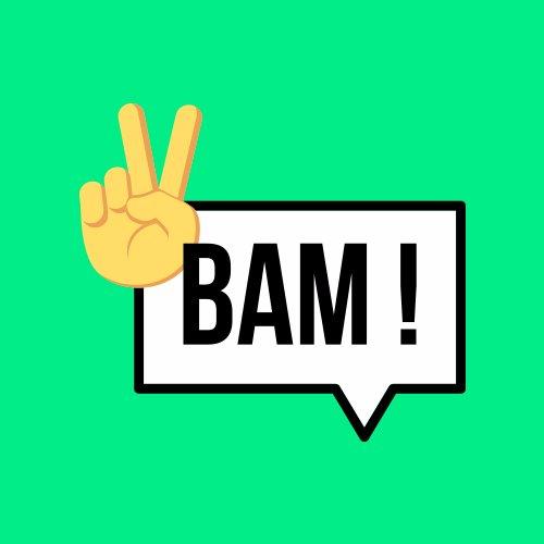 BAMorientation