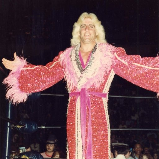 Ric Flair's Robes