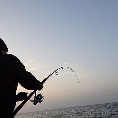 スギ 四平 堤防 釣り