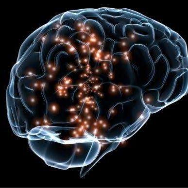 neurosocialself