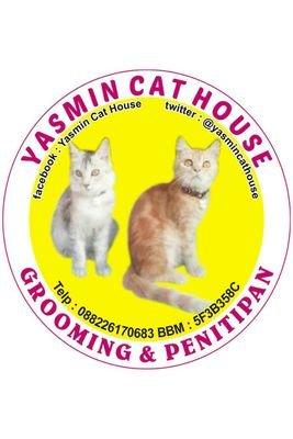 Yasmin Cat House Yasmincathouse Twitter
