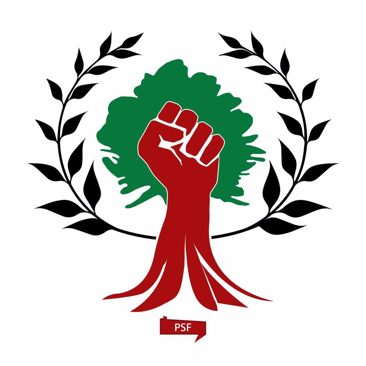 PSF_Syria