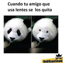 Luis Pineda (@09dea2c66974434) Twitter