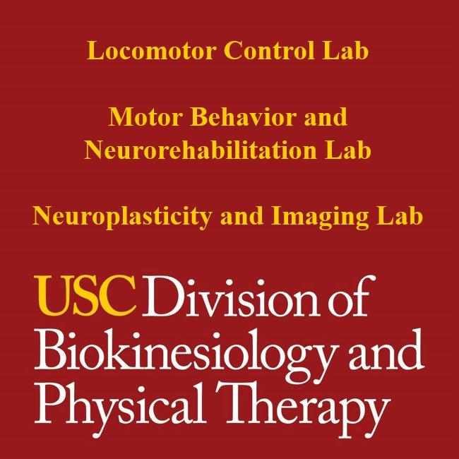 USC BKN - Neuro Labs (@USCBKN_Neuro) | Twitter
