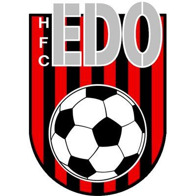 Afbeeldingsresultaat voor EDO logo haarlem