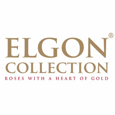 Elgon Collection On Twitter Lovely Jewel Pink Rimmed Rose 14