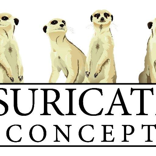 SuricateConcept