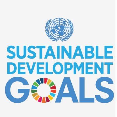 UN DESA NGO Branch Profile Image