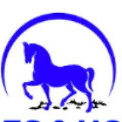 Heroes Horse
