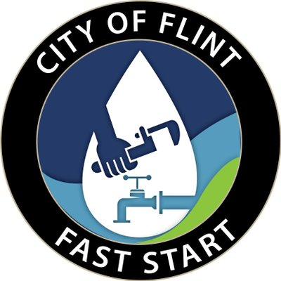 Image result for flint fast start initiative