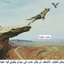 ابوغازي (@9mqDKe4lovW6Bq0) Twitter