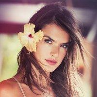 Alessandra Ambrosio twitter profile