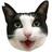 @hatchan_nikki Profile picture