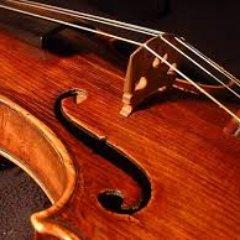 CCSD 89 Orchestras