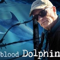 blood Dolphin$ | Social Profile