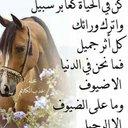 بشير امحمد حسن خليل (@1968BASHIR25) Twitter