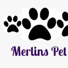 Merlins Pet Stores (@petsupplies2017) Twitter profile photo