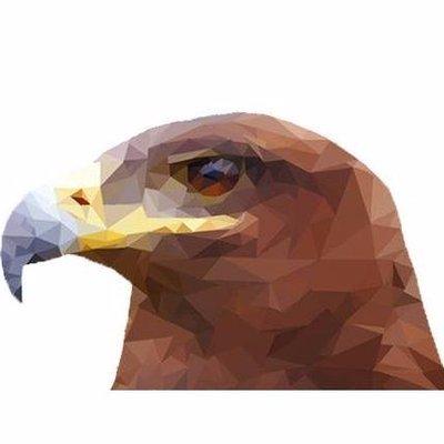 Águilas aztecas on twitter Águila real fmcn agz https t co