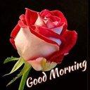 Priya Ranjan (@575af5348916457) Twitter