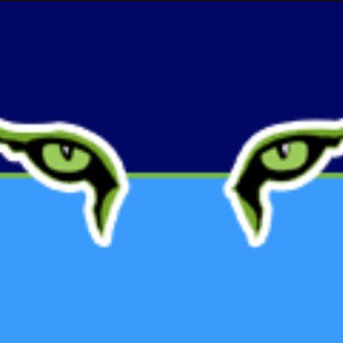 San Diego Force