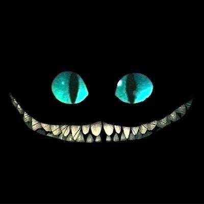 Alice Cheshire (@thealicechesh) Twitter profile photo