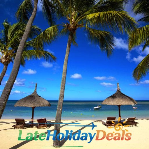 cheap holiday deals to usa