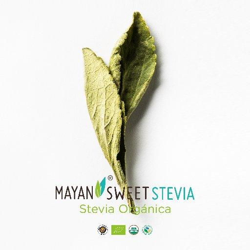 @MayanStevia