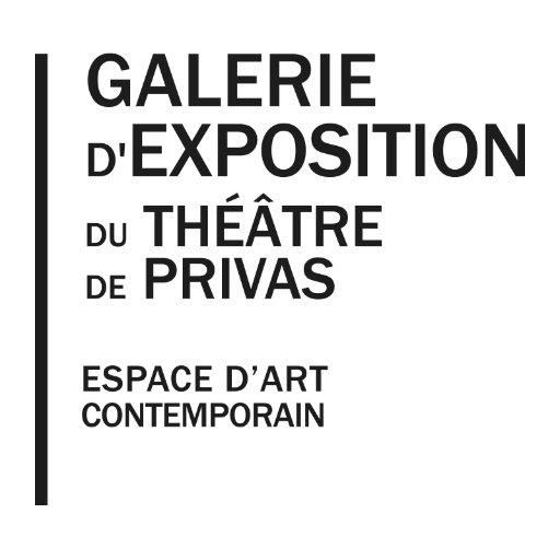 """Résultat de recherche d'images pour """"galerie art théâtre privas"""""""