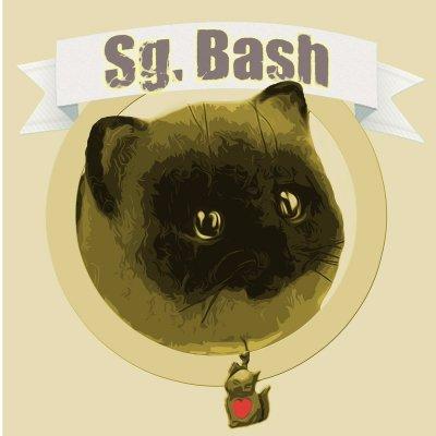 Sg. Bash (@Sg_bash)