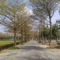 JosephCheng_TW