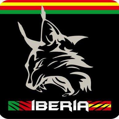 Resultado de imagen de logo iberia iracing