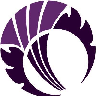 Wildcats (@WildcatsCricket) Twitter profile photo
