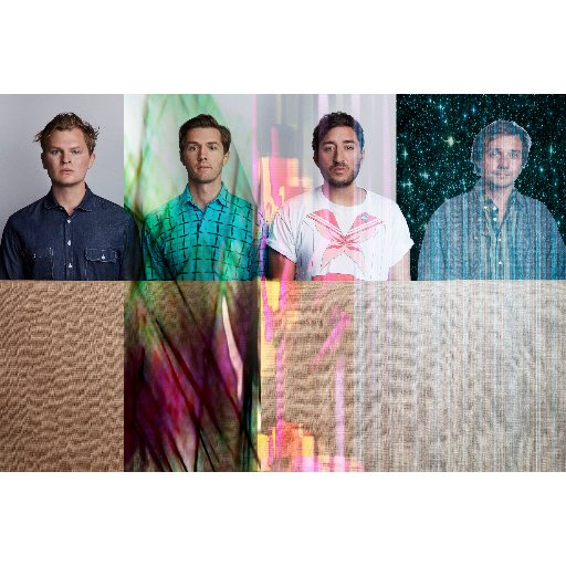 Grizzly Bear Social Profile