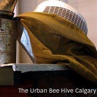 UrbanBeeHiveCalgary