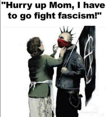 Image result for hurry up mom i have to go fight fascism