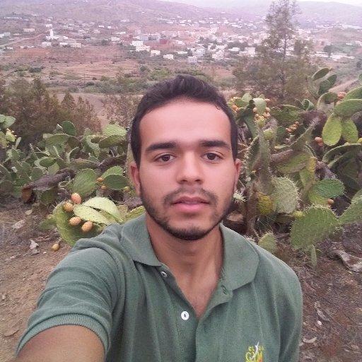 Ibrahim EL MANSOURI