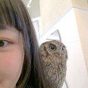 ゆ り (@09308yuri) Twitter
