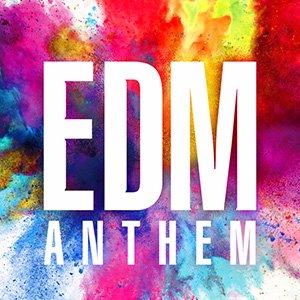 EDM 🎶 ブチアゲ