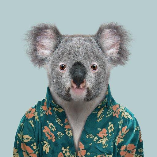 @Queensland