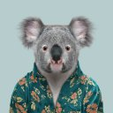 Photo of Queensland's Twitter profile avatar