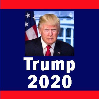Libs Lost 2020  🇺🇸