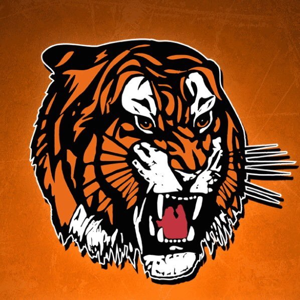 Image result for medicine hat tigers